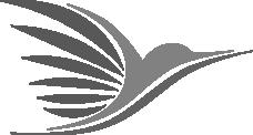 logo-breitenbergerpascal-bw
